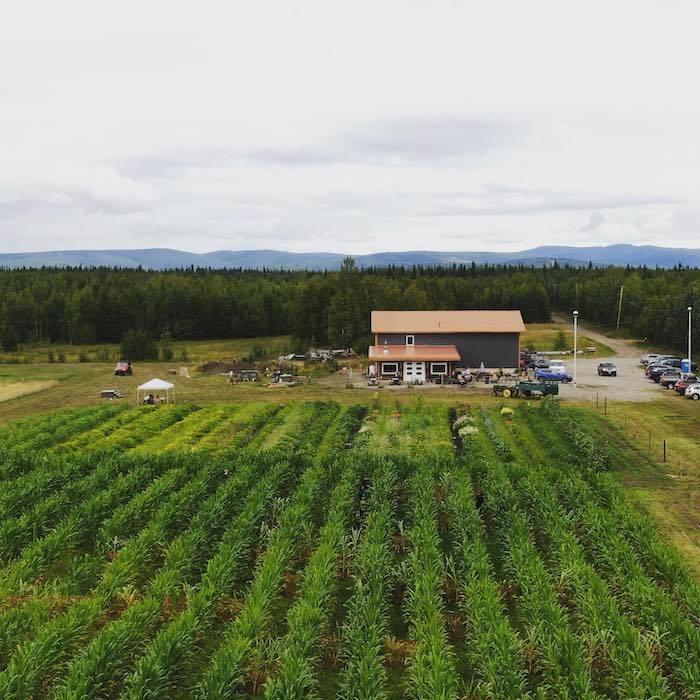 Arctic Harvest farm